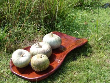 Ironbark Pumpkin Bowl
