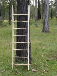 Gum stick Rack