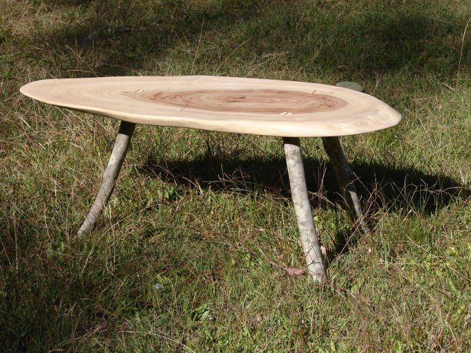 Red Ash and Camphor Stick Coffee Table