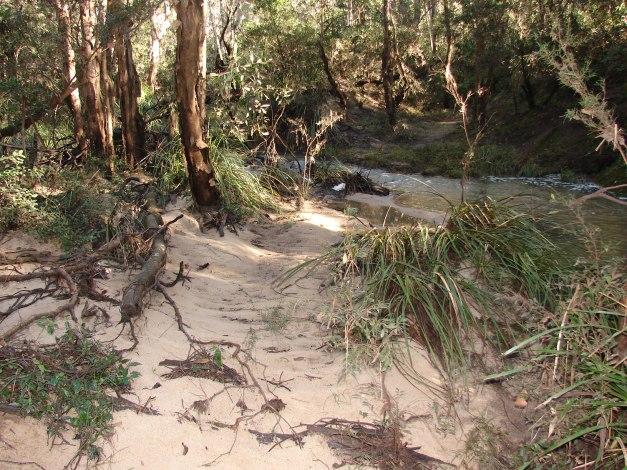 Sportsman Creek Sand Island Project